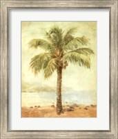 Mirage Palm II Fine-Art Print