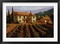 Tuscan Vineyard Fine-Art Print