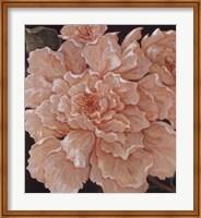 Ivory Peonies Fine-Art Print