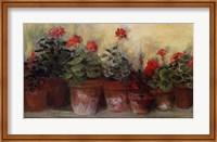 Kathleen's Geraniums Fine-Art Print