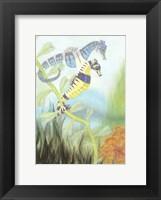 Seahorse Serenade III Fine-Art Print