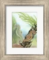 Seahorse Serenade IV Fine-Art Print
