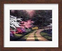 Dogwood Road Fine-Art Print
