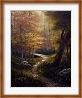 Aspen Beauty Fine-Art Print