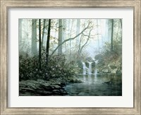 Transcending Forest Fine-Art Print