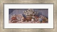 Seashell Collection I Fine-Art Print