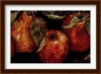 Summer Fruit Fine-Art Print