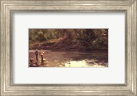 Upstream Fine-Art Print