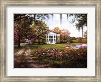 Wild Rose Manor Fine-Art Print