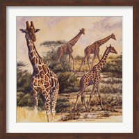 Safari III Fine-Art Print