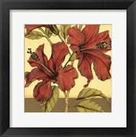Cropped Sophisticated Hibiscus II Fine-Art Print