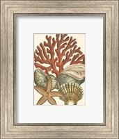 Small Coral Medley I Fine-Art Print