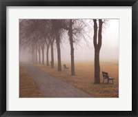 Foggy Day Fine-Art Print