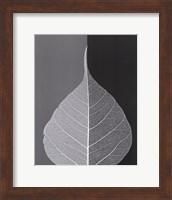 Crystalline Form II (Mini) Fine-Art Print