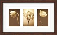 Caramel Blooms Fine-Art Print