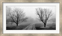 Road to Somewhere Fine-Art Print