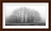 Gathering Trees Fine-Art Print