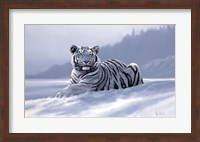 Siberian Tiger Fine-Art Print