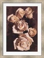 Gathering Roses Fine-Art Print