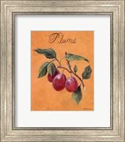 Plums Fine-Art Print