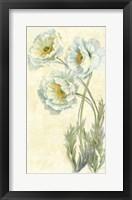 Poppy Trio Fine-Art Print