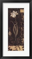 Black And White Tulip Fine-Art Print