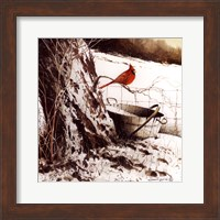 Country Cardinal Fine-Art Print