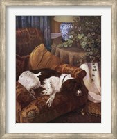 Hazel Fine-Art Print