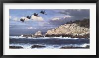 Shorebirds at Point Lobos Fine-Art Print