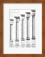 The Five Orders of Architecture Fine-Art Print