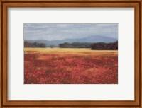 French Poppy Fields Fine-Art Print