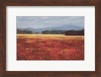 French Poppy Fields Fine-Art Print