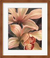 Orchids I Fine-Art Print