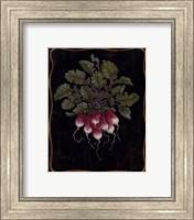 Bouquet Of Radishes l Fine-Art Print