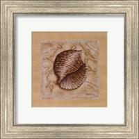 Sea Treasures I Fine-Art Print