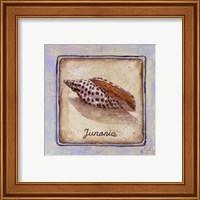 Junania Fine-Art Print