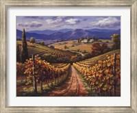 Vineyard Hill II Fine-Art Print