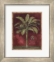 Caribbean Palm II With Bamboo Border Fine-Art Print