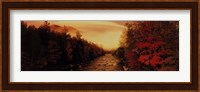 New Hampshire Stream Fine-Art Print