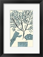 Azure Seaweed II Fine-Art Print