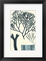 Azure Seaweed IV Fine-Art Print