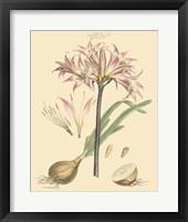 Blushing Pink Florals II Fine-Art Print