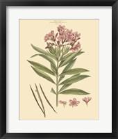 Blushing Pink Florals III Fine-Art Print