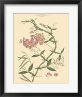 Blushing Pink Florals VI Fine-Art Print