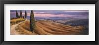 Four Cypress Fine-Art Print