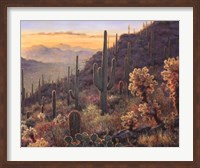 Sonoran Sunset Fine-Art Print