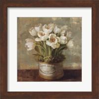 Hatbox Tulips Fine-Art Print