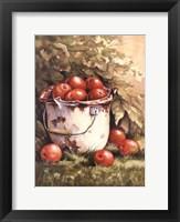 Pail of Apples Fine-Art Print
