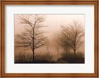Foggy Walk Fine-Art Print
