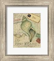 Postcard Shells II Fine-Art Print